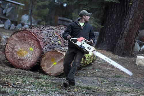 چوب بر