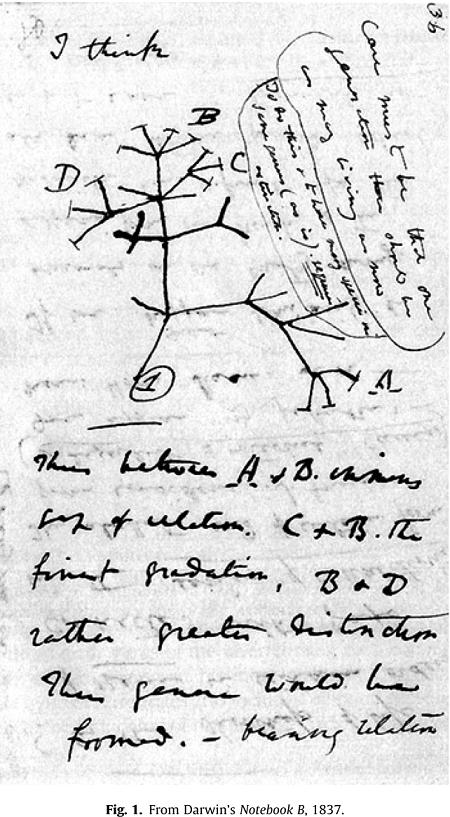 دست نوشتههای داروین