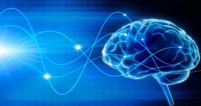 آیا کووید 19 به مغز آسیب میزند ؟