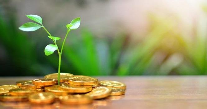 بهترین سرمایه گذاری در سال 1400 ؛ در سال 1400 چگونه پول پارو کنیم؟