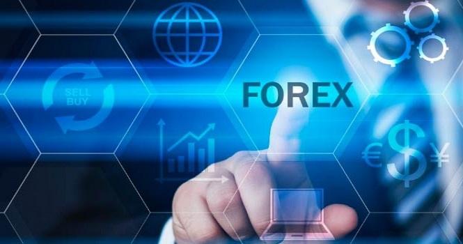 سودآوری در بازار مالی فارکس به کمک اکسپرت فارکس