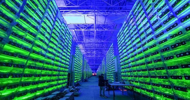 ماشین حساب چیا  (Chia Calculator) ؛ کسب درآمد از استخراج XCH چقدر است؟