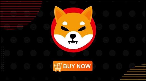نحوه خرید ارز دیجیتال شیبا اینو (Shiba Inu) چگونه است؟