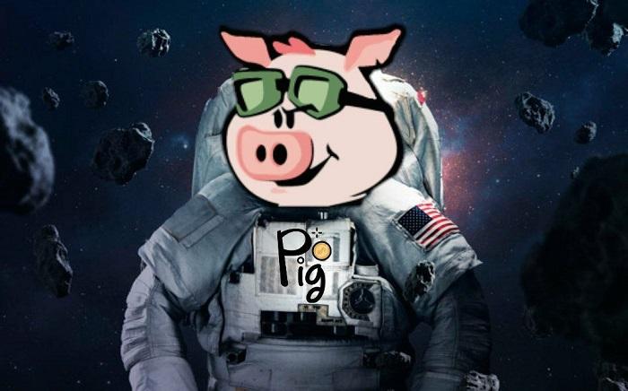 توکن پیگ چیست ؛ استخراج، نحوه خرید و قیمت ارز دیجیتال Pig