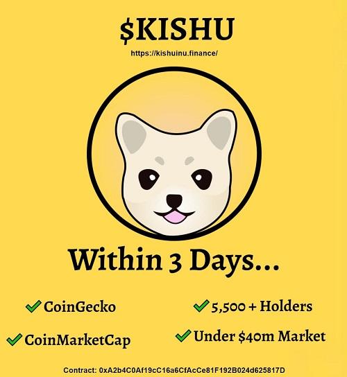 پیش بینی قیمت کیشو اینو ؛ آینده ارز Kishu Inu چگونه است؟