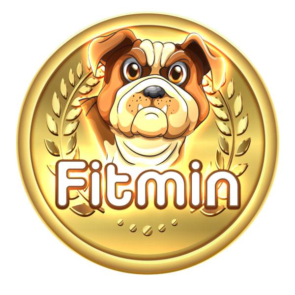 ارز دیجیتال فیت مین فایننس (FTM) ؛ قیمت، نحوه خرید و بهترین کیف پول رمز ارز Fitmin Finance