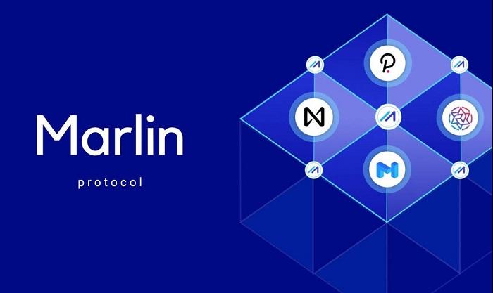 ارز دیجیتال مارلین (Marlin) ؛ قیمت، نحوه خرید و بهترین کیف پول رمزارز POND