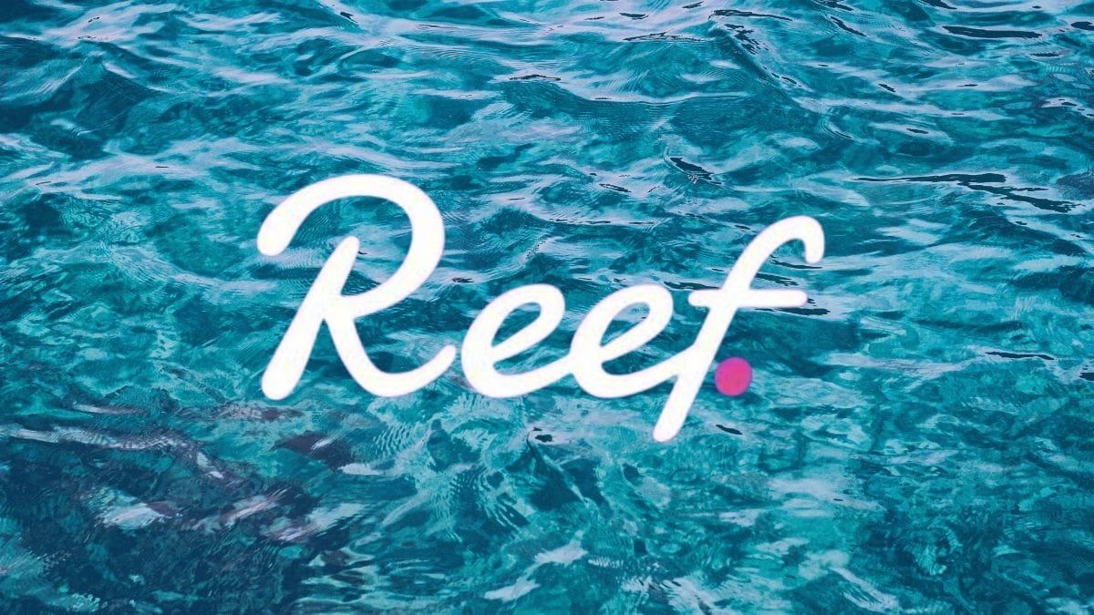 آینده و پیش بینی قیمت ارز دیجیتال ریف (Reef) در سال 2021، 2022 و سال های بعد